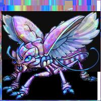 opal adult
