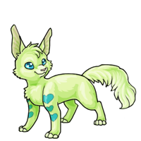 lime adolescent