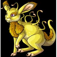 lemon adult