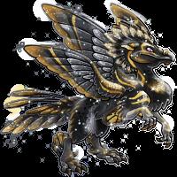 blackgold adult