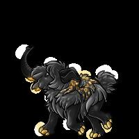 blackgold baby